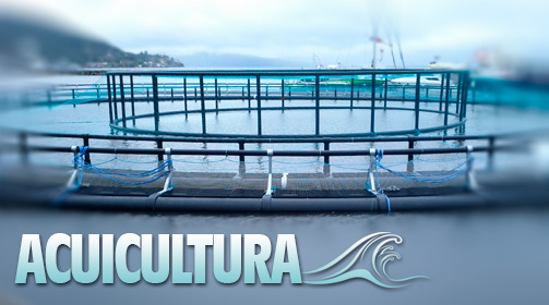 Departamento de acuicultura de Tecnovit