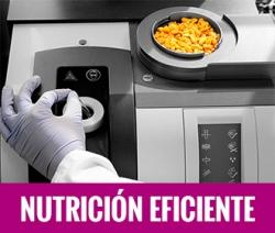 Nutrición eficiente